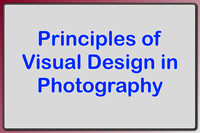 Visual Design in Photography