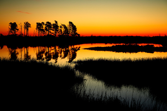 Sunrise, Beach Road, Chincoteague National Wildlife Refuge, VA