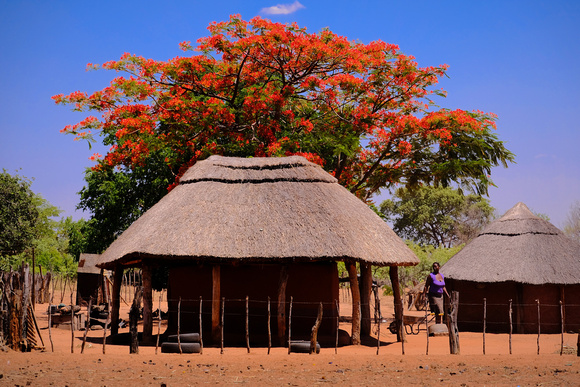 Monde community village on the Zambezi River, Zimbabwe