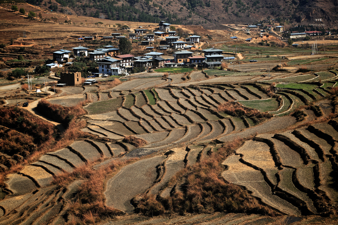 Rural Bhutan